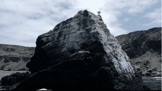Caleta Punta de Choros 2